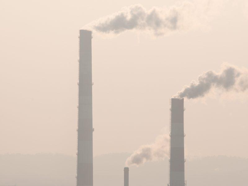 Oro kokybei gerinti – nauji pasiūlymai