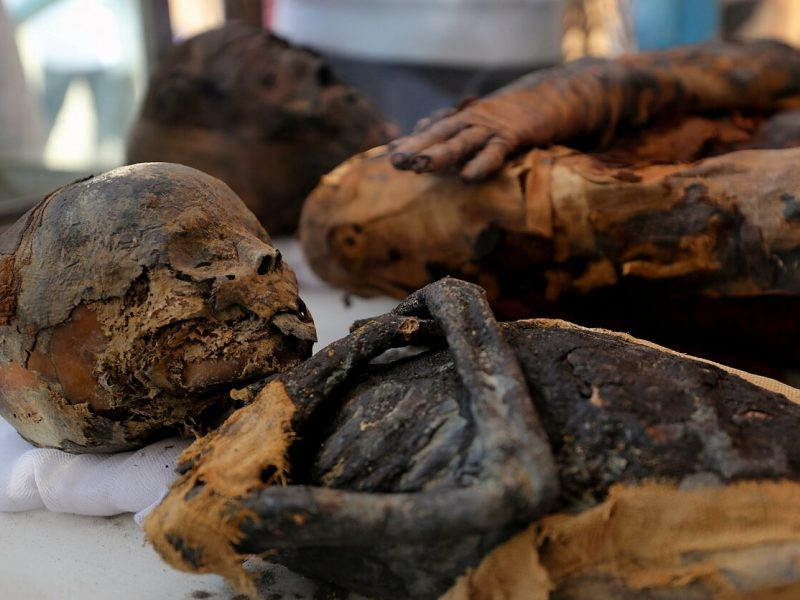 Egipte atrastas senovinis kapas su mumijomis