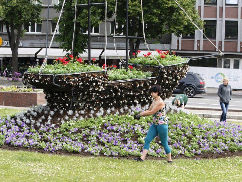 Klaipėdos aikštėse – vasaros žiedai