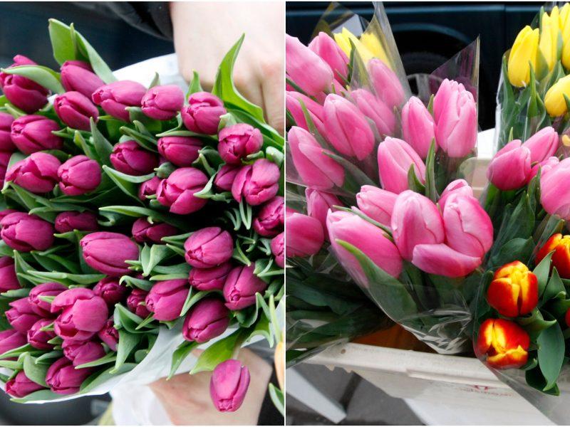 Įsimylėjėlių dieną Klaipėdoje gėlėmis nelijo