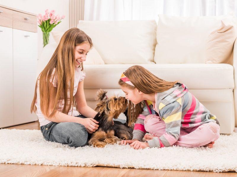 Mamos dienoraštis: gal įsigiję šunį jūs nebeturėsite ramybės, bet atrasite kitą lobį