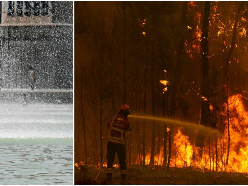 Vakarų Europoje būgštaujama dėl artėjančių karščių ir miškų gaisrų grėsmės
