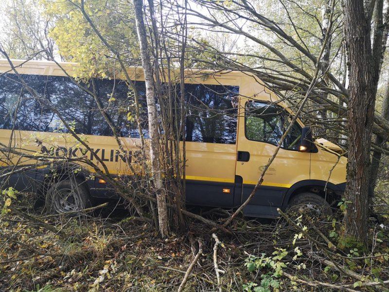 Sutrikus vairuotojo sveikatai, nuo kelio nuvažiavo mokyklinis autobusas su 16 vaikų