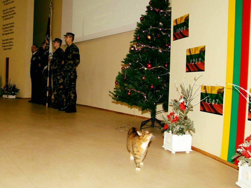 Valstybės sienos apsaugos sistemoje – tarnybinė katė