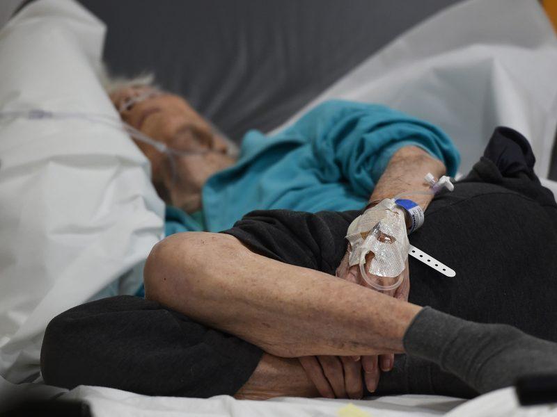 Ar buvo įmanoma išgelbėti nuo meningokoko mirusią senolę? <span style=color:red;>(medikų komentaras)</span>