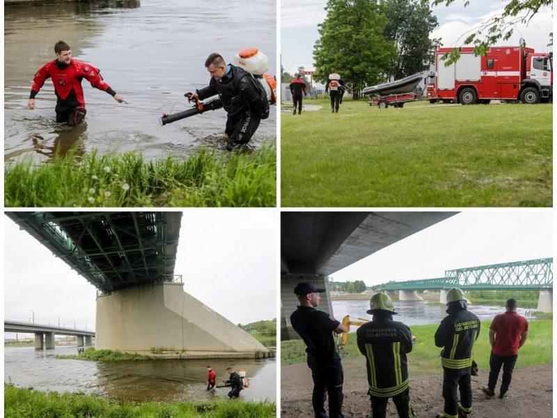 Kauno savivaldybė neskelbs ekstremalios situacijos dėl taršos Nemune