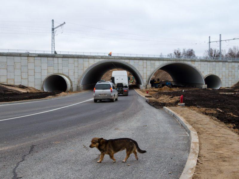 Automobilių eismas Amalių tuneliu