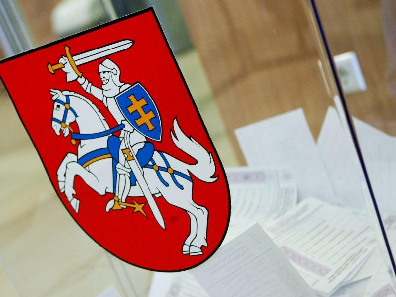 Užsienio lietuviai per Seimo rinkimus galės turėti savo apygardą