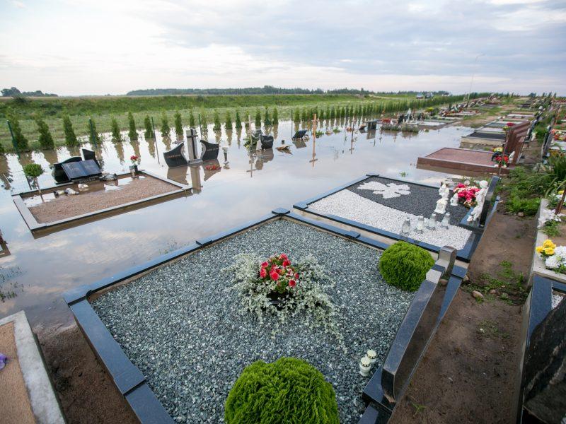 Vainatrakio kapinėse apsilankęs kaunietis: situacija čia siaubinga