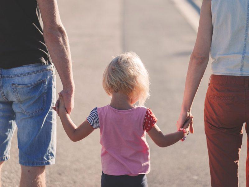 Daliai vaikus auginusių tėvų – neigiamas Vyriausybės atsakas