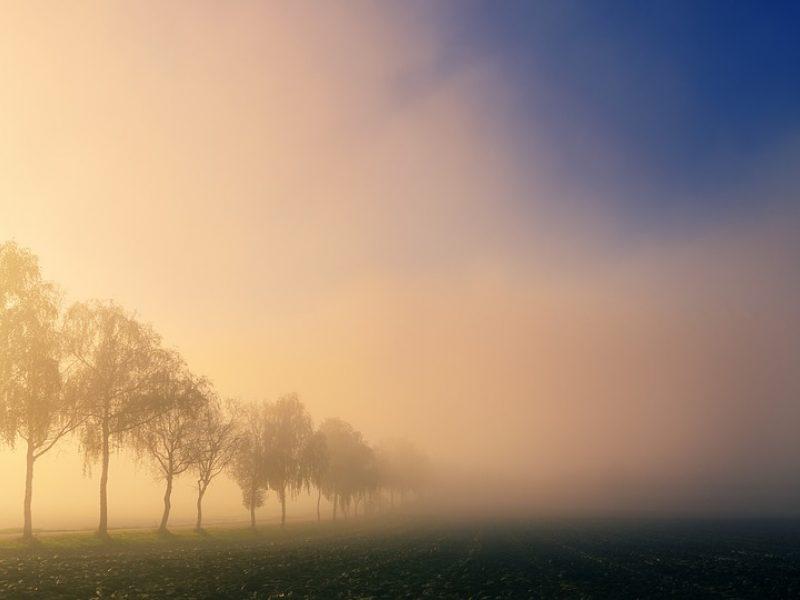 Eismo sąlygas Lietuvoje sunkina rūkas