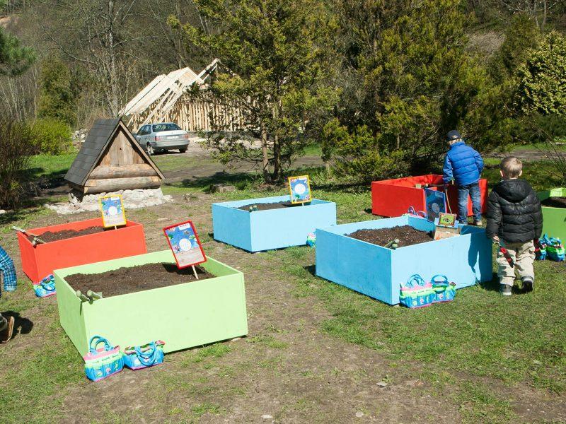 Seimas sutiko reglamentuoti lauko darželių veiklą