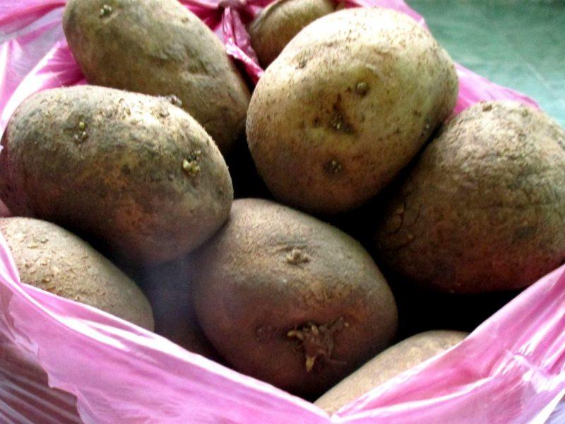Kauniečiai fiksuoja bulvių kainas: kai kur galima nupirkti labai pigiai