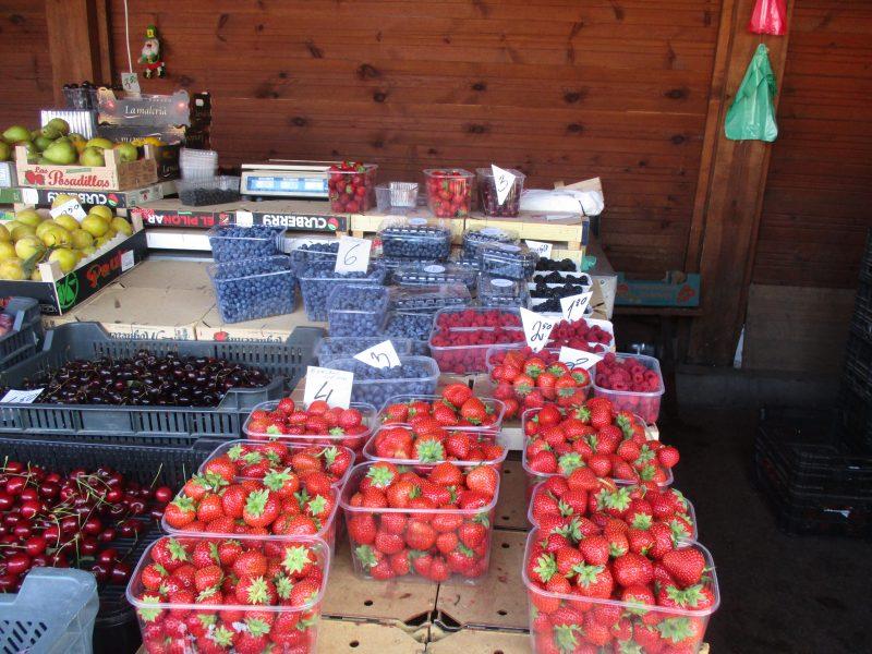 Uogų, vaisių ir daržovių kainų skirtumas Palangos ir Kauno turguose – milžiniškas
