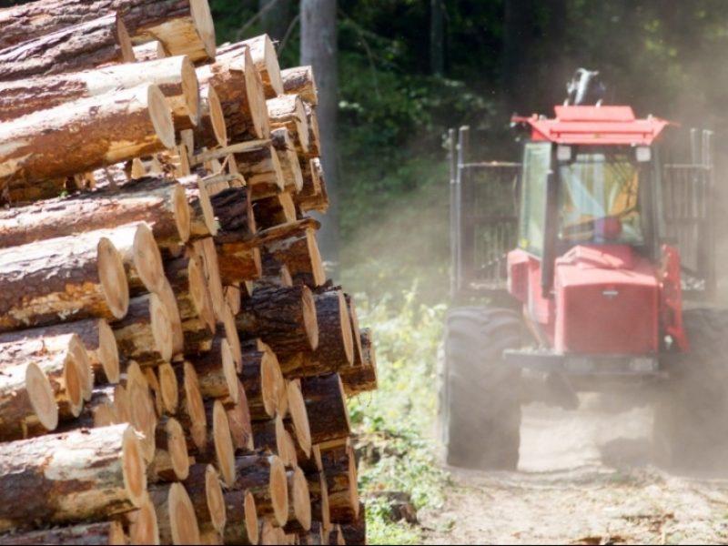 Pasirašomas susitarimas dėl medienos klasterio