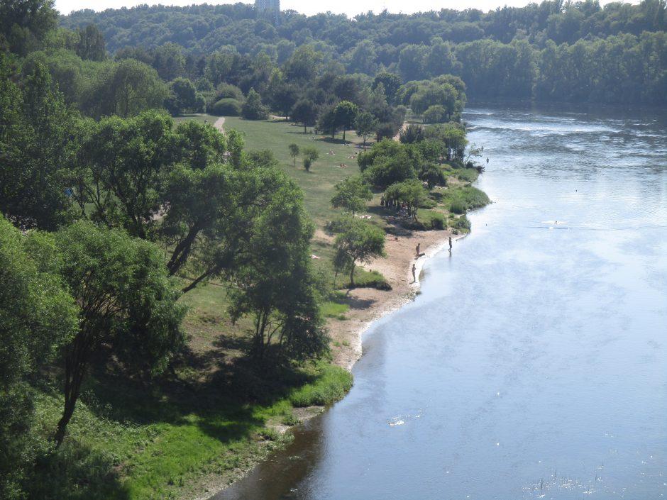 Čarlzo upės prekybos sistemos mokymai