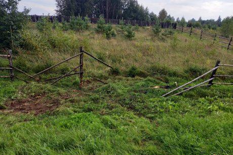 Alytaus rajone – išgriauta tvora: kaltininkas pasišalino iš įvykio vietos
