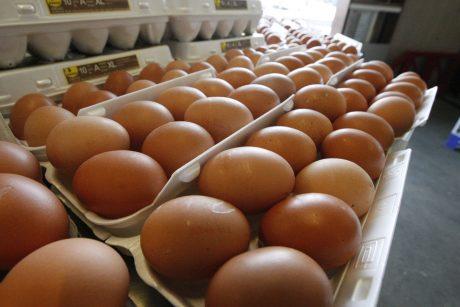 Uostamiesčio turguje – kiaušinių detektyvas