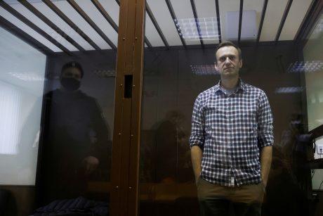A. Navalno komanda ragina rusus išeiti į gatves protestuoti