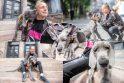 Kauniečio džiaugsmas – šuo, į kurį atsigręžia praeiviai